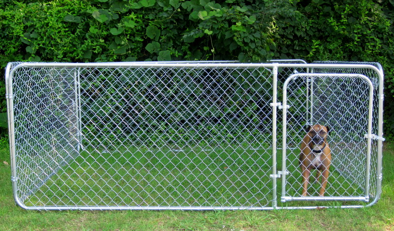 Dog Kennels Fences And Gates